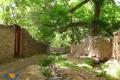 روستای وشنوه قم و مراسم سر درختی !