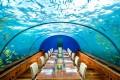 عکس ها و دیدنی های مالدیو