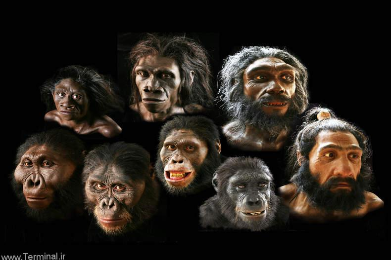 پیدا شدن آثار انسانهای اولیه در بام قشم !