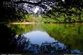 زیبایی های طبیعت در دریاچه چورت