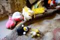 تصاویر غمانگیز از خانههای سیلزدگان ایلامی